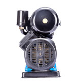 PS150b Self Primming eléctrico de la bomba bomba centrífuga