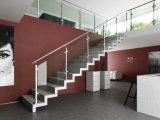 Sistema de cristal de los pasamanos de la escalera del acero inoxidable
