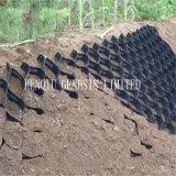 Le sol avec différentes tailles de géocellules de stabilisateur