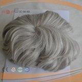 Breve parte grigia dei capelli del Mens dei capelli umani (PPG-l-01517)