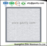 Facile à nettoyer Hot vendre dépoli plafond décoratifs en aluminium