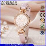 Montre-bracelet occasionnelle de dames de quartz de courroie en cuir d'ODM (Wy-079B)