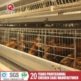 Jaula automática llena de la capa para la capa de la gallina