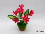 Plástico/Artificial/flores de seda Lily Bush (XF-S003)