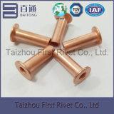 remache de acero tubular lleno principal plano plateado cobre de 6X20m m