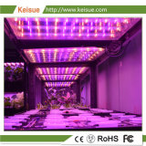 Keisue crecer con luz LED Impermeable IP65