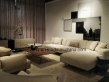 Sofà domestico moderno del cuoio della mobilia (D-79)