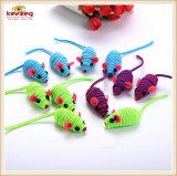 고양이는 /Colorful 고무줄 마우스 고양이 장난감, 애완 동물을 (KB3053)
