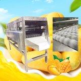 Macchina elaborante dell'ostruzione dell'ananas di lavorazione della frutta