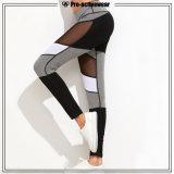 Ghette elastiche asciutte rapide su ordinazione di yoga di nuova forma fisica di disegno alte