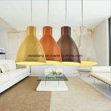 De moderne Eenvoudige BinnenLamp van de Tegenhanger van de Verlichting met Houten Kleur