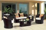 /Rattan esterno/sofà HS1619 del rattan della mobilia hotel Patio//del giardino