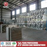 Algerien-Geflügelfarm-Batterie mit Ventilations-Kühlventilator