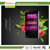KES verticale 2.0 dell'azienda agricola delle piante idroponiche della famiglia di Keisue crescente