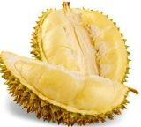 Buona polvere pura della spremuta del mango di gusto 100%/polvere sapore del mango solubile in acqua