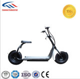 Citycoco Electric Scooter for Aduits