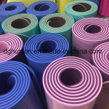 Stuoie calde di yoga del TPE di forma fisica di esercitazione di alta qualità di vendita