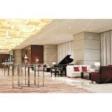 Estrela personalizada mobiliário do lobby do hotel para venda (CS126)