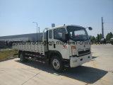 MiniVrachtwagen HOWO met de Dieselmotor van 160 PK voor Afrika