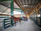 Сарай лошади панельного дома подвижной