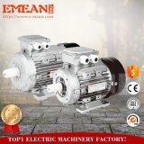 Motor elétrico assíncrono trifásico da série Y2