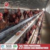 Couche de poulet cages en batterie pour la vente