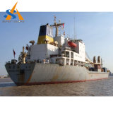 buque de carga del carguero de graneles 10000dwt