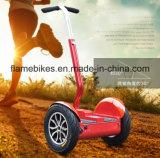 道の電気スクーターの1000W都市