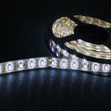 120 indicatore luminoso di striscia caldo di bianco LED di LEDs/M SMD 3528 impermeabile
