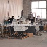 Kundenspezifischer gewundener Qualitäts-heller LKW-Rückseiten-Antriebsachse-Gang des Kegelradgetriebe-BS0030 8/41