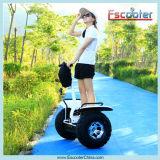 Auto-balanceamento de duas rodas do veículo elétrico rodoviário