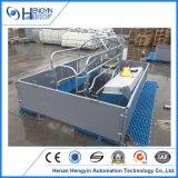 ISO 9001 оцинкованных Pig Farrowing ящик для продажи