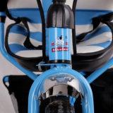 판매를 위한 아이를 위한 2016 최고 대중적인 3 바퀴 Triycle Trike
