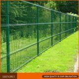Bella recinzione del bordo del giardino della rete metallica