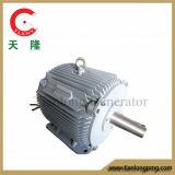 Ffl-3kw/100rpm/DC115V Dauermagnetdrehstromgenerator (PMG/PMA/Hydro)