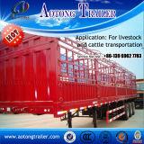 Un bestiame a base piatta pratico dei 3 assi recinta il rimorchio del camion del carico semi