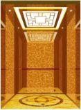 [جرمن] محترف مسافرة مصعد مع عمليّة جرّ غير مسنّن ([رلس-222])