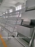 de Apparatuur van het Landbouwbedrijf van het Gevogelte van de Kooi van de Kip van het A voor de Kip van de Laag van China
