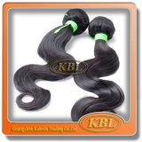 Remy Haarpflegemittel-unverarbeitetes brasilianisches Haar