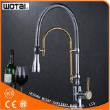 Однорычажно вытяните вне Faucet кухни (WT1001CG-KF)