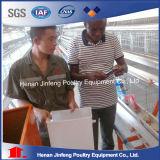 Uitstekende kwaliteit een Systeem van de Kooi van de Kip van het Type Automatisch voor het Landbouwbedrijf van het Gevogelte/Aven Jaulas