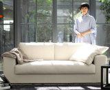 Sofà cinese del tessuto del salone di svago della mobilia