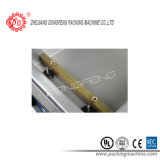 Máquina de embalaje al vacío (DZ-280)
