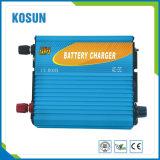48V Lader van de Batterij NiMH van 5A de Slimme Universele