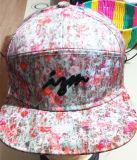Algodón 100% 5 gorras de béisbol bordadas los paneles del deporte