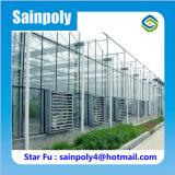 Qualitäts-im Freien ausgeglichenes Isolierglas täfelt Gewächshaus