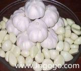 Nuovo aglio sbucciato cinese di buona qualità del raccolto