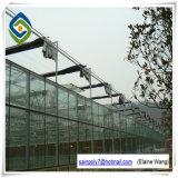 Парник Multispan Hydroponic стеклянный для клубники