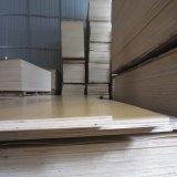 Madera contrachapada del abedul del grado del centímetro cúbico del Bb de la base del álamo de la talla estándar 15m m para los muebles