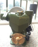 세륨을%s 가진 Wedo 1awzb 0.55kw Auto 각자 Priming Peripheral Water Pump